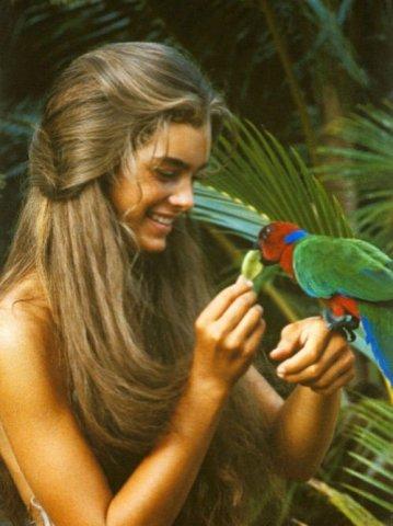 Цветотипы внешности вымысел или реальность  Beauty Insider