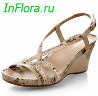 обувь оптом из ростова. 5 июн 2012 ... . В этой статье речь пойдет о стильной и удобной обуви на платформе