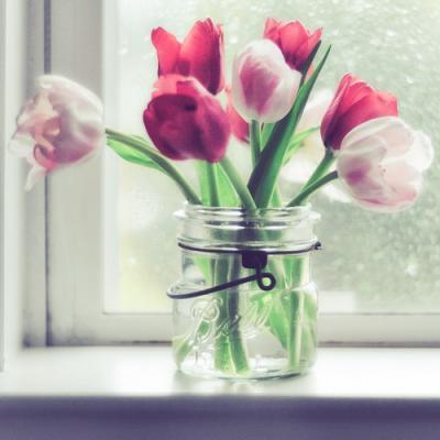 http://img.galya.ru/galya.ru/Pictures2/2/2011/03/15/t4_2468320.jpg