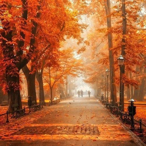Красивые картинки с осенним пейзажем