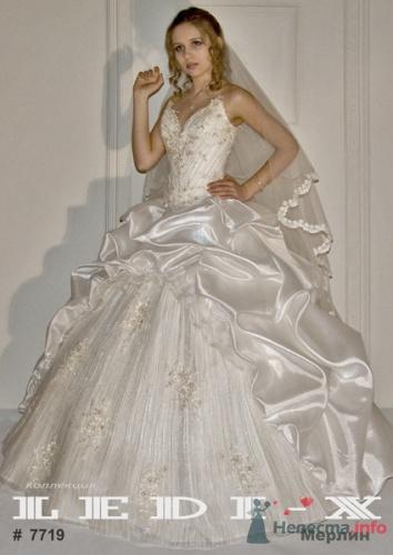 платья для полных весна 2012