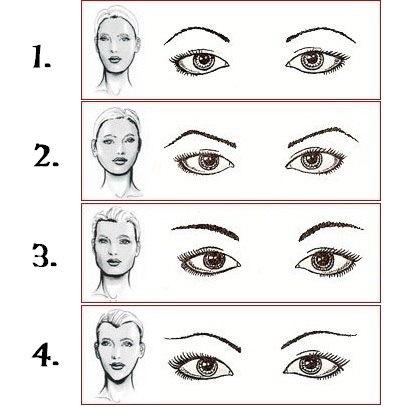 виды бровей по типу лица схемы