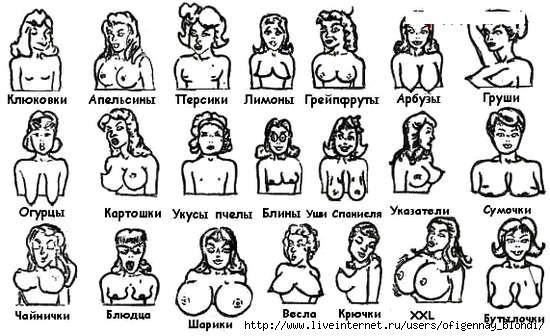 Типы виды женских сосков фото 553-252